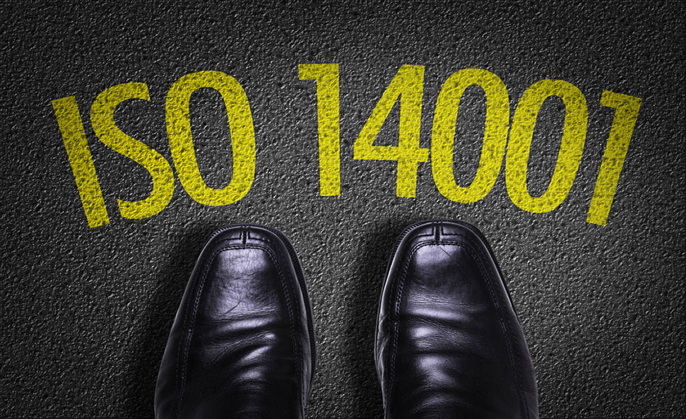 ISO14001-Shoe