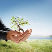 مجموعه قوانین و مقررات زیست محیطی جلد دوم
